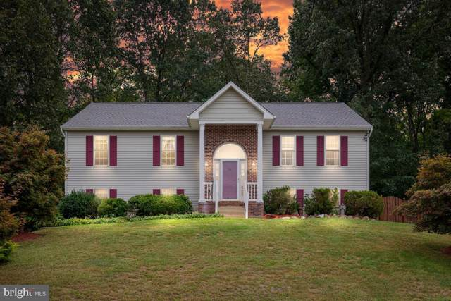 3612 E Glen Dower Drive, FREDERICKSBURG, VA 22408 (#VASP215594) :: John Smith Real Estate Group