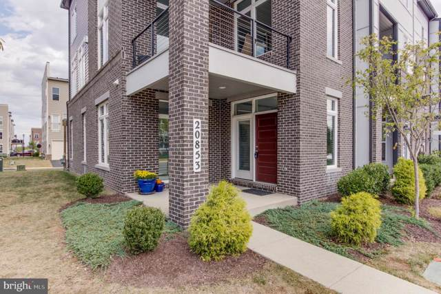 20853 Ashburn Heights Drive, ASHBURN, VA 20148 (#VALO393016) :: LoCoMusings