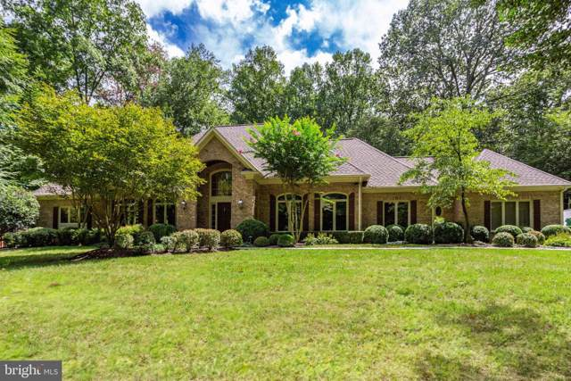 145 River Park Lane, GREAT FALLS, VA 22066 (#VAFX1085092) :: Great Falls Great Homes
