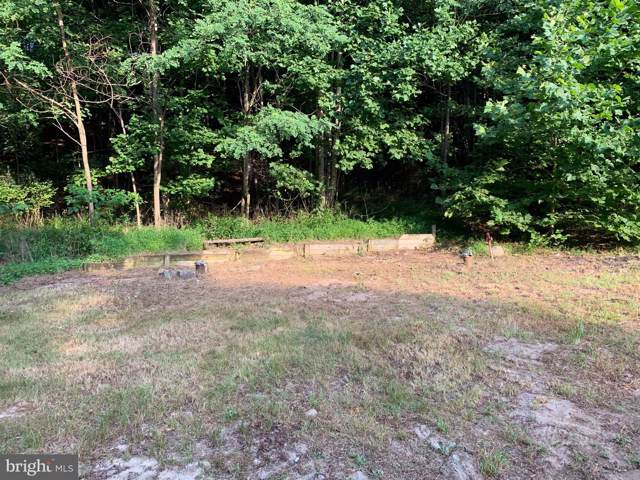 88 Pt Mary Miller Trail, BERKELEY SPRINGS, WV 25411 (#WVMO115858) :: Pearson Smith Realty
