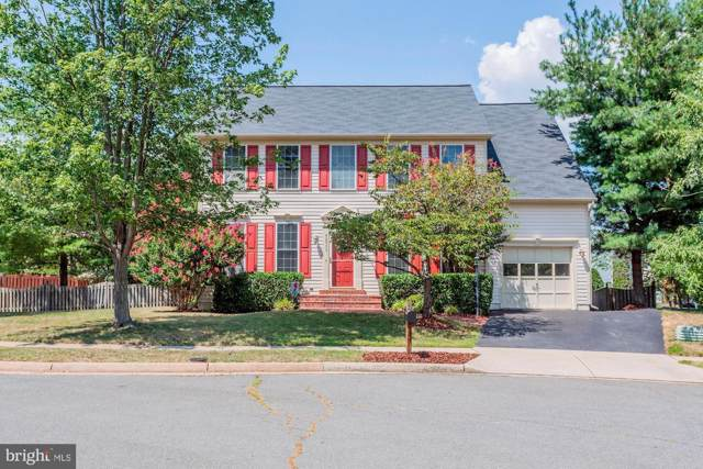 42956 Ohara Court, ASHBURN, VA 20147 (#VALO393086) :: Network Realty Group