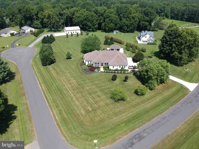 101 Grove Cove Rd, CENTREVILLE, MD 21617 (#MDQA141244) :: ExecuHome Realty