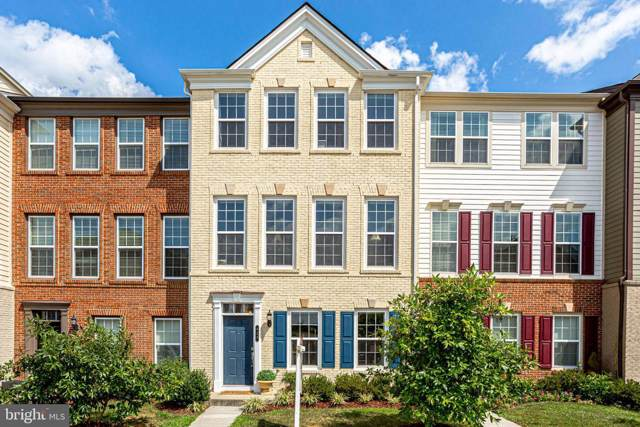 423 Heartleaf Terrace SE, LEESBURG, VA 20175 (#VALO393120) :: Michele Noel Homes