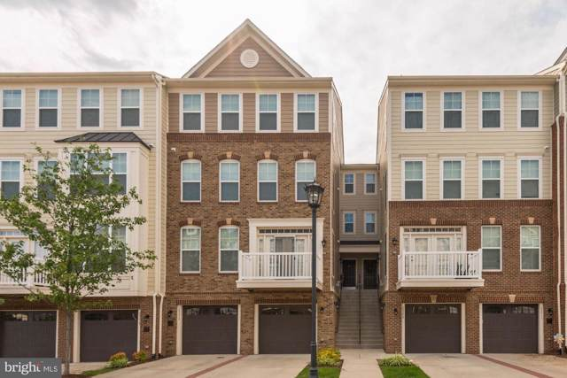 25213 Briargate Terrace, CHANTILLY, VA 20152 (#VALO393122) :: Network Realty Group