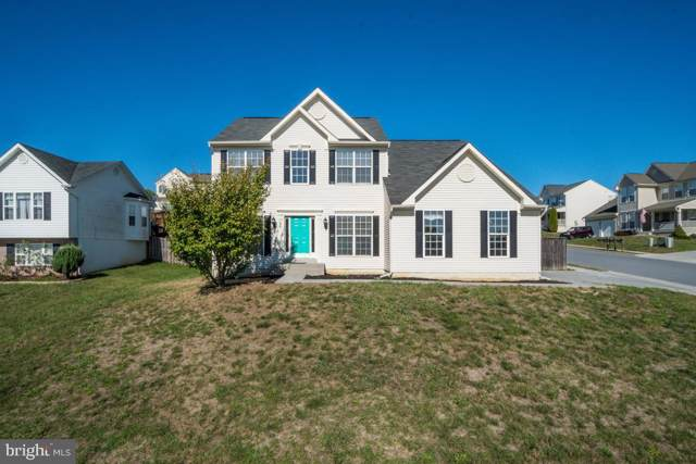 120 Tracy Drive, STRASBURG, VA 22657 (#VASH116978) :: Tessier Real Estate