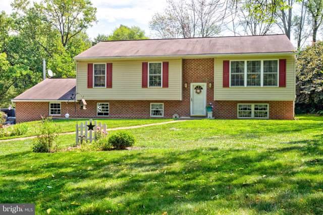 1326 Buck Hollow Road, MOHNTON, PA 19540 (#PABK346806) :: Bob Lucido Team of Keller Williams Integrity