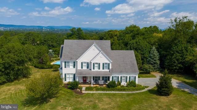 40438 Quarter Branch Road, LOVETTSVILLE, VA 20180 (#VALO393176) :: Great Falls Great Homes