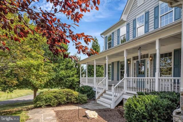 40891 Meadow Vista Place, LOVETTSVILLE, VA 20180 (#VALO393194) :: Great Falls Great Homes