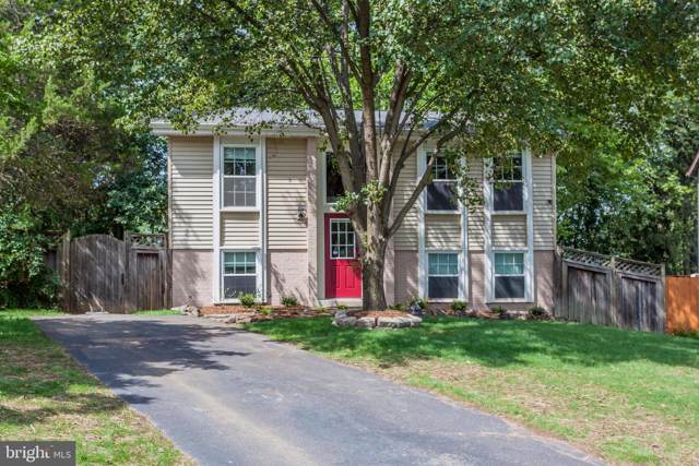 311 Newman Court, STERLING, VA 20164 (#VALO393224) :: Pearson Smith Realty