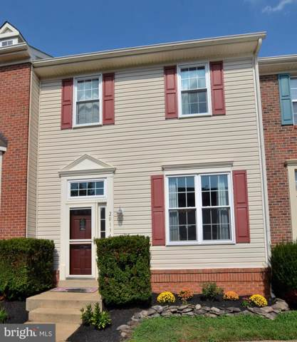 20134 Bar Harbor Terrace, ASHBURN, VA 20147 (#VALO393258) :: AJ Team Realty
