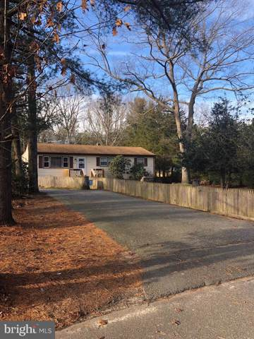 626 Grant Avenue, WOODBINE, NJ 08270 (#NJCM103444) :: John Smith Real Estate Group