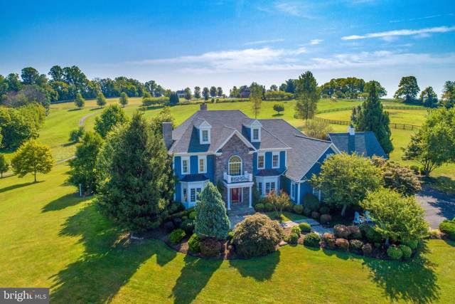 16080 Gold Cup Lane, PAEONIAN SPRINGS, VA 20129 (#VALO393286) :: Great Falls Great Homes