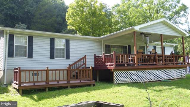 363 Mongold Road, MATHIAS, WV 26812 (#WVHD105456) :: AJ Team Realty