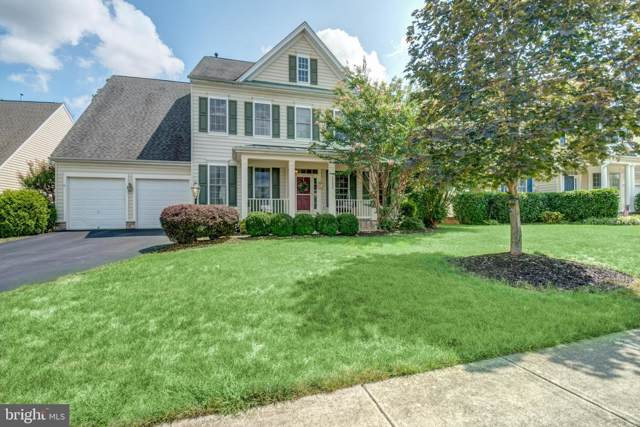 23084 Red Admiral Place, BRAMBLETON, VA 20148 (#VALO393340) :: The Miller Team