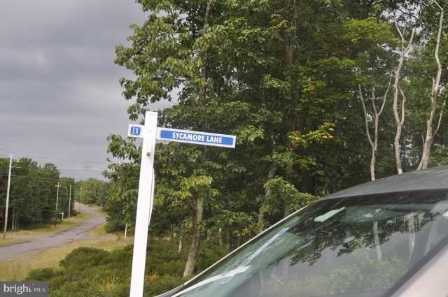 92 Sycamore, HAZLETON, PA 18201 (#PALU103104) :: The Matt Lenza Real Estate Team
