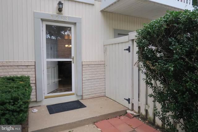 7239 Jillspring Court 17C, SPRINGFIELD, VA 22152 (#VAFX1085856) :: The Maryland Group of Long & Foster Real Estate