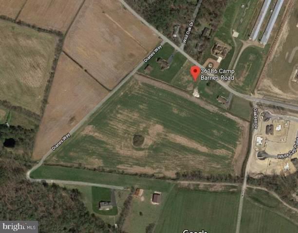 36186 Camp Barnes Road, FRANKFORD, DE 19945 (#DESU146926) :: Barrows and Associates