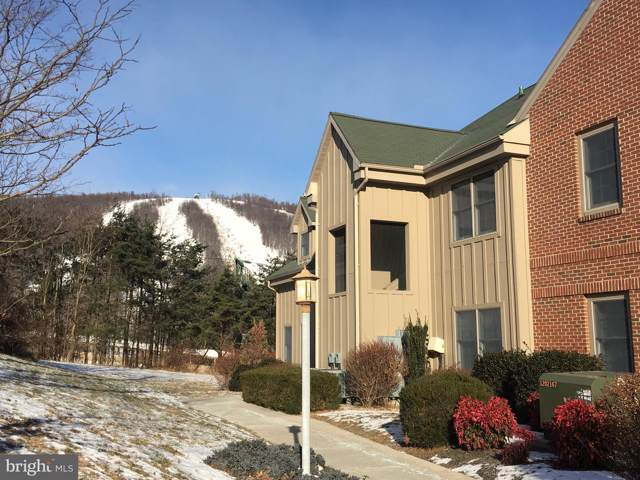 14175 Northernlight Drive #11, MERCERSBURG, PA 17236 (#PAFL168050) :: Younger Realty Group