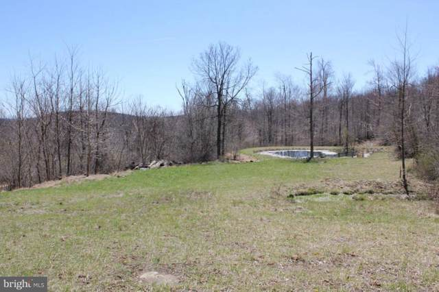 13201 Tower Road, THURMONT, MD 21788 (#MDFR252494) :: AJ Team Realty
