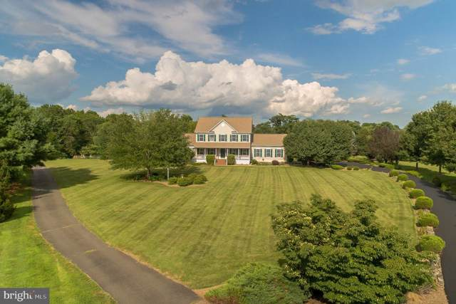 35501 Troon Court, ROUND HILL, VA 20141 (#VALO393484) :: EXP Realty