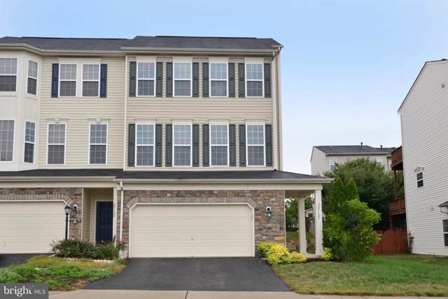 25123 Hummocky Terrace, ALDIE, VA 20105 (#VALO393514) :: Circadian Realty Group