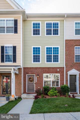 4503 Scarlet Oak Lane, BALTIMORE, MD 21229 (#MDBA482024) :: The Licata Group/Keller Williams Realty