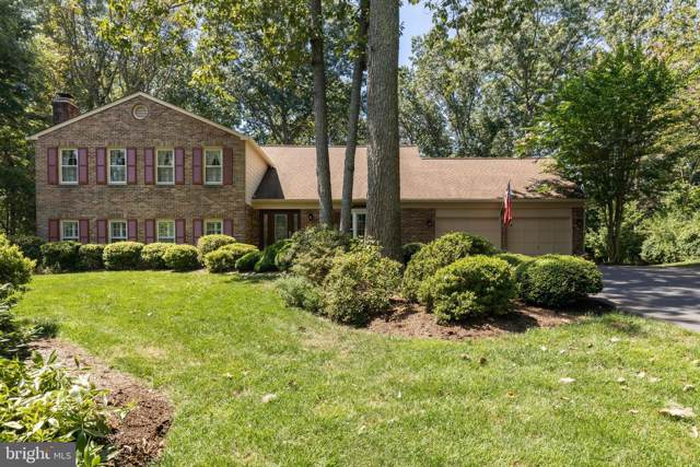 11005 Birdfoot Court, RESTON, VA 20191 (#VAFX1086428) :: The Greg Wells Team