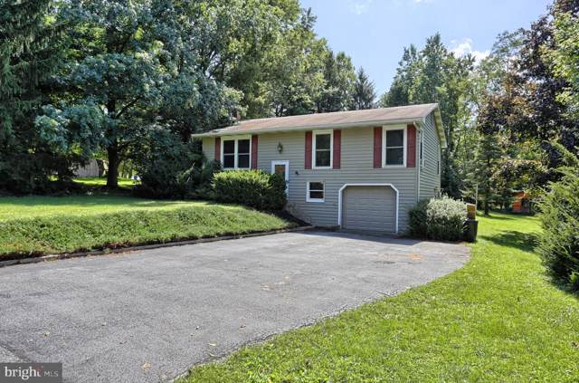 28 Wagner Circle, HUMMELSTOWN, PA 17036 (#PADA114140) :: Teampete Realty Services, Inc