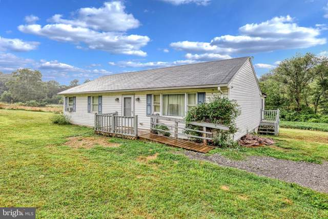9195 Woodbine Road, AIRVILLE, PA 17302 (#PAYK124162) :: The Joy Daniels Real Estate Group