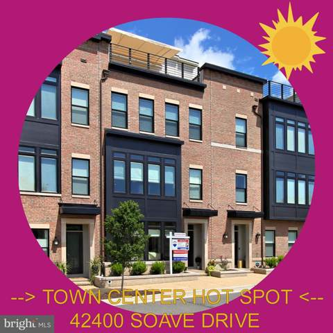 42400 Soave Drive, BRAMBLETON, VA 20148 (#VALO393678) :: AJ Team Realty