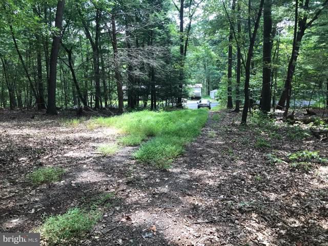297 Green Tree Drive, AUBURN, PA 17922 (#PASK127574) :: Ramus Realty Group