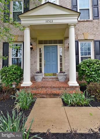 18503 Pelicans Nest Way, LEESBURG, VA 20176 (#VALO393744) :: Labrador Real Estate Team