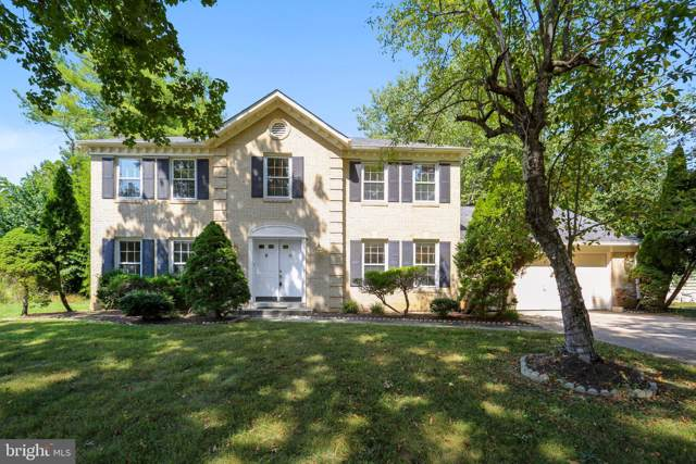 11204 Broad Green Drive, POTOMAC, MD 20854 (#MDMC676844) :: The Licata Group/Keller Williams Realty