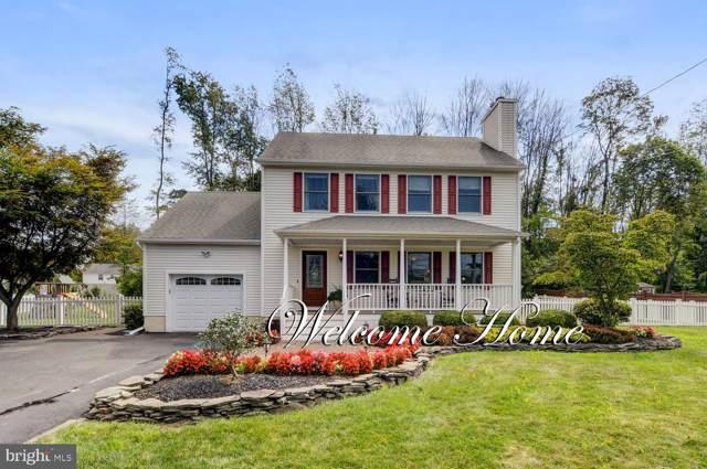 767 Sergeantsville Road, STOCKTON, NJ 08559 (#NJHT105568) :: Shamrock Realty Group, Inc