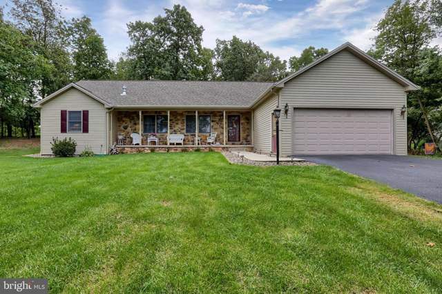 124 Ridge Drive, DILLSBURG, PA 17019 (#PAYK124296) :: The Heather Neidlinger Team With Berkshire Hathaway HomeServices Homesale Realty