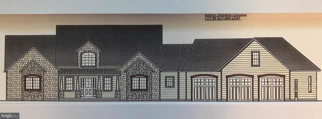 130 Autumn Leaf Lane, MANHEIM, PA 17545 (#PALA139414) :: Liz Hamberger Real Estate Team of KW Keystone Realty