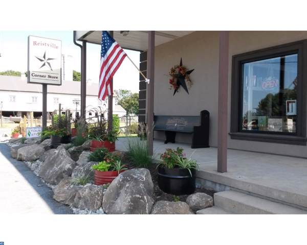 1564 Stiegel Pike, MYERSTOWN, PA 17067 (#PALN108764) :: The Joy Daniels Real Estate Group