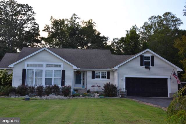 11365 Hayman Drive, PRINCESS ANNE, MD 21853 (#MDSO102622) :: Homes to Heart Group
