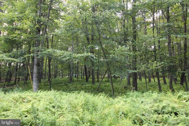 Lot 76 Goldenrod Drive, TERRA ALTA, WV 26764 (#WVPR103842) :: Great Falls Great Homes