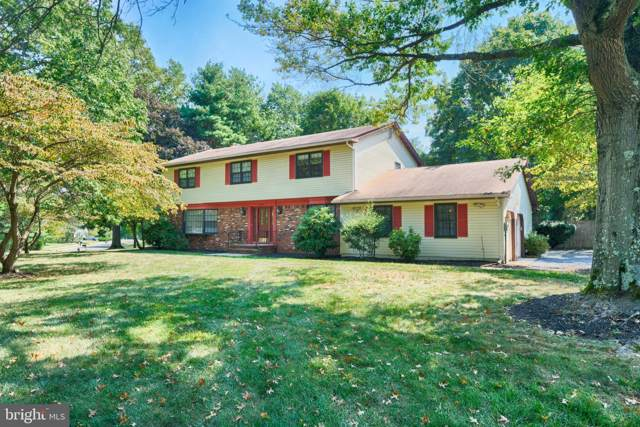 17 Slayback Drive, PRINCETON JUNCTION, NJ 08550 (#NJME285148) :: Ramus Realty Group