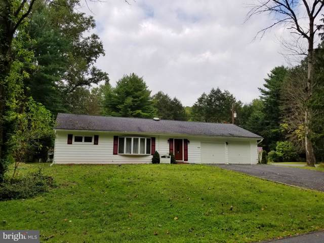 1009 Woodland Dr, POTTSVILLE, PA 17901 (#PASK127660) :: Ramus Realty Group