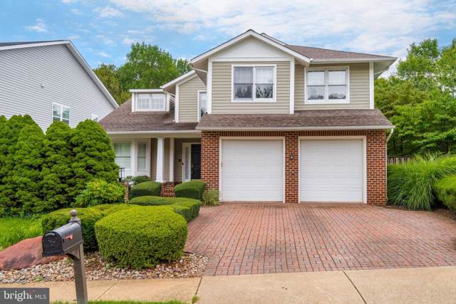 20456 Tappahannock Place, STERLING, VA 20165 (#VALO394096) :: Great Falls Great Homes