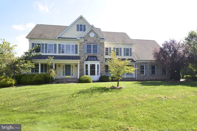 37974 Highland Farm Place, PURCELLVILLE, VA 20132 (#VALO394100) :: EXP Realty