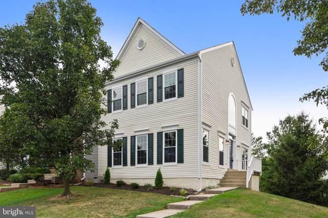 44127 Allderwood Terrace, ASHBURN, VA 20147 (#VALO394118) :: The Licata Group/Keller Williams Realty
