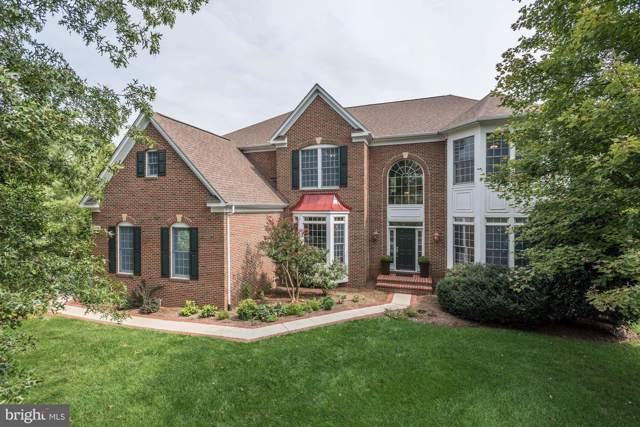 24048 Windy Hollow Court, ALDIE, VA 20105 (#VALO394178) :: Circadian Realty Group