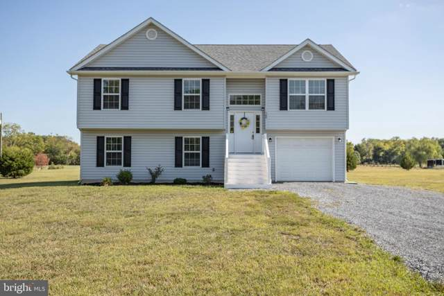 309 Macbeth Lane, CLEAR BROOK, VA 22624 (#VAFV152954) :: Cristina Dougherty & Associates