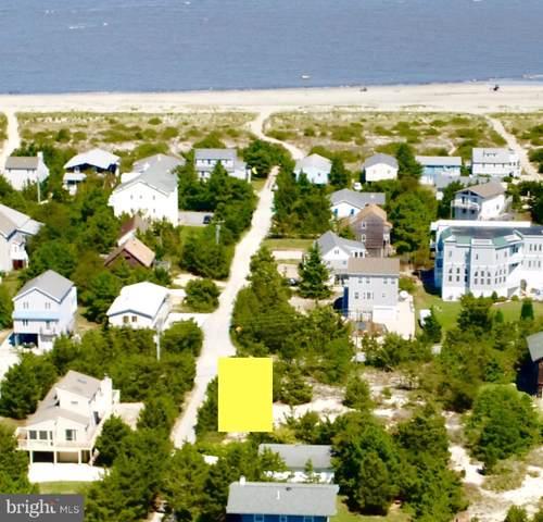 1305 N Bay Shore Drive, MILTON, DE 19968 (#DESU147594) :: Erik Hoferer & Associates