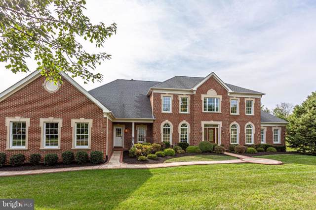 40749 Beechnut Road, LEESBURG, VA 20175 (#VALO394202) :: The Miller Team
