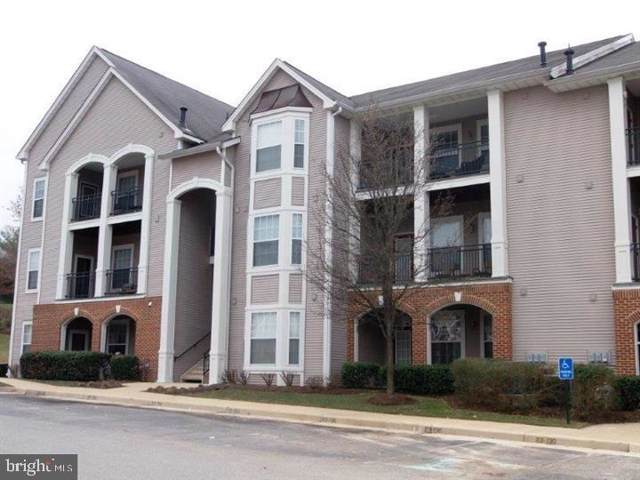 20453 Chesapeake Square #103, STERLING, VA 20165 (#VALO394236) :: LoCoMusings