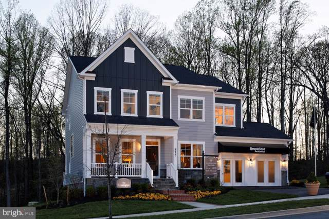 Lakerun Place, ROUND HILL, VA 20141 (#VALO394246) :: Viva the Life Properties